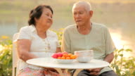 Happy Senior couple sitting outdoors video