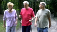 Happy senior friends holding hiking poles while walking in park video