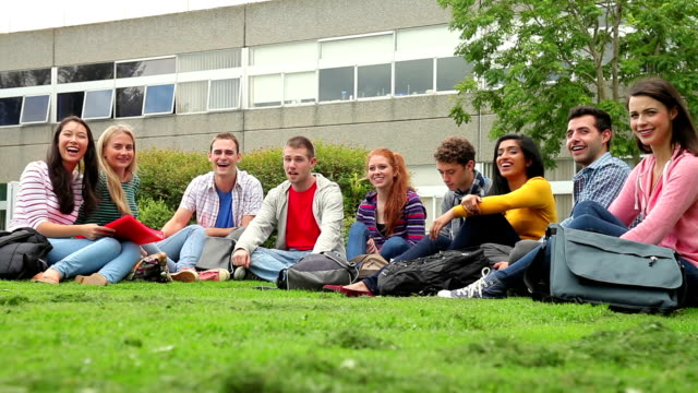 Happy students sitting on the grass together talking video