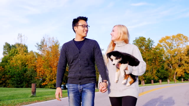 Happy Together with his beloved dog. Multiethnic couple walking in the park with his dog. Caucasian woman carries a puppy hand, is near an Asian man video