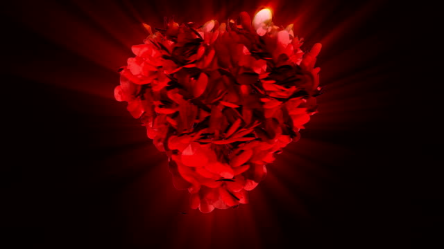 Happy Valentine and rose heart exploding, shine video