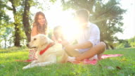 Happy young family on a summer day with their dog video