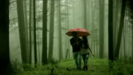 Happy young romantic couple walking together under umbrella in nature. video