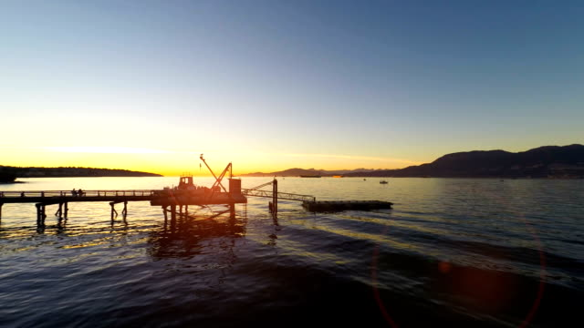 Harbour Sunset video