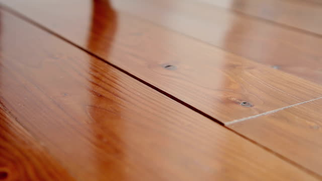 DOLLY: Hardwood floor video