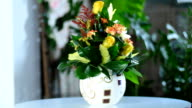 Harmoniously created flower bouquet video