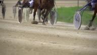HD SUPER SLOW MO: Harness Racing video