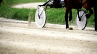 HD SUPER SLOW MO: Harness Racing With Time Warp video