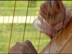 Harp Player video