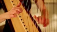 Harp video
