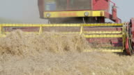 Harvester in the field closeup shot video