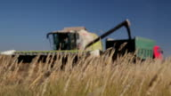 Harvester Unloads Grain video