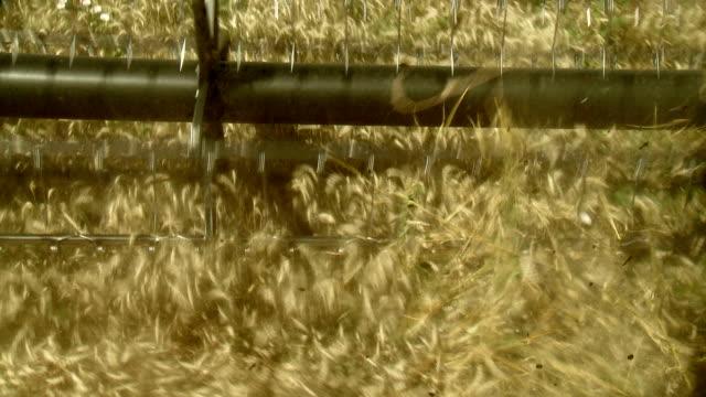 Harvester video