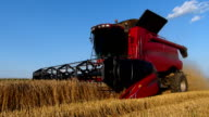 Harvester working on a wheat field video