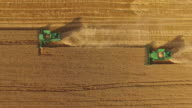 Harvesters in the field. video