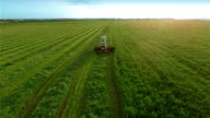 Harvesters Work on Green Field video