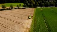 Harvesting a wheat field video