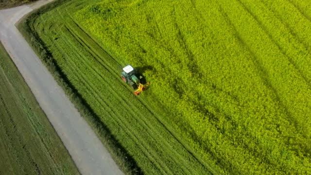 AERIAL Harvesting Rapeseed Field Flyover Shot video