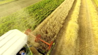 AERIAL Harvesting The Wheat video