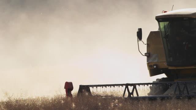 Harvesting video