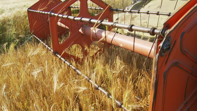 HD SLOW MOTION: Harvesting Wheat with Mechanized Combine video