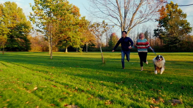 Have fun with your beloved dog. Young multi-ethnic couple running in the park video