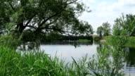 Havel river (Brandenburg Germany) landscape along Havelradweg (Havel bike path). video