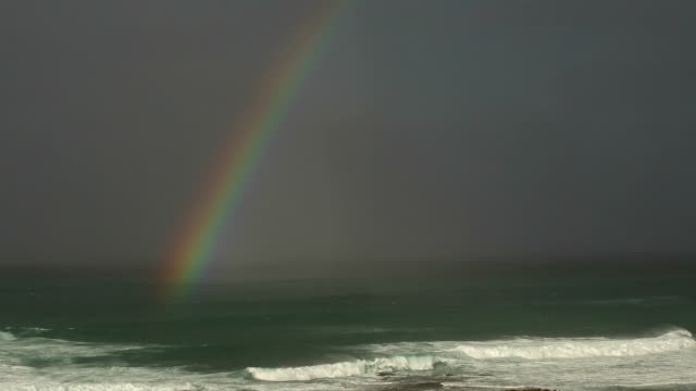 Hawaii Rainbow after a Storm video