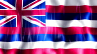Hawaii State Flag Animation video