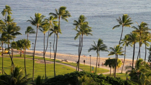 Hawaii Waikiki Beach at Sunrise video