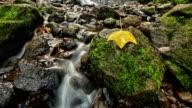 Hawaii waterfall timelapse video