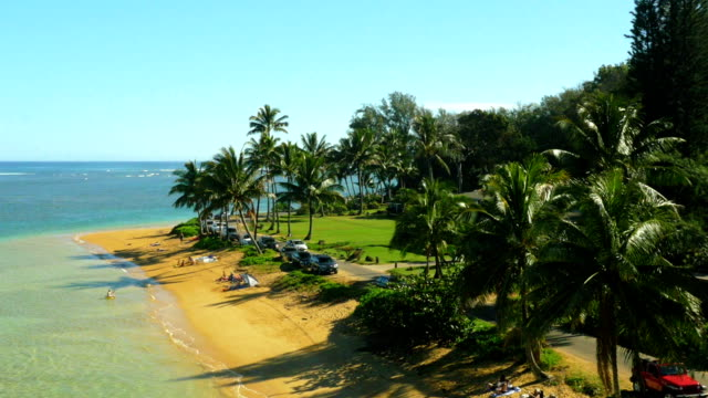Hawaiian beach aerial shot video