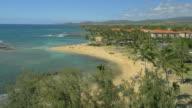 Hawaiian beach UAV drone aerial shot video