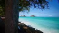 Hawaiian beach video