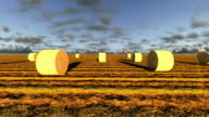 Haybales in a field video