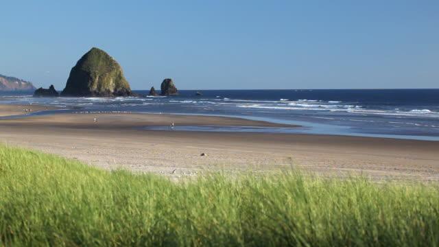 HD Haystack Rock Cannon Beach Oregon video