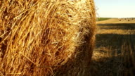 Haystacks on the field 2 video