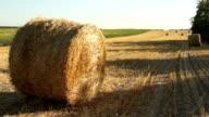 Haystacks on the field 3 video