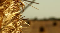 Haystacks on the field video