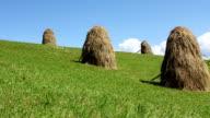 Haystacks video