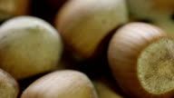Hazelnut video