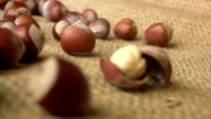 Hazelnuts video