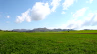 HD:Green field and cloudy sky video