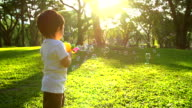 HD:Little boy playing soap bubbles in the park. video