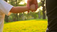 HD:Mother hold hand of his son walking in the park. video