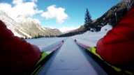 HD-Motion Effect: Close-up Shot of Cross Country Skiing Action video