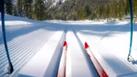 HD-Motion Effect: Wide Shot of Cross Country Skiing Action video