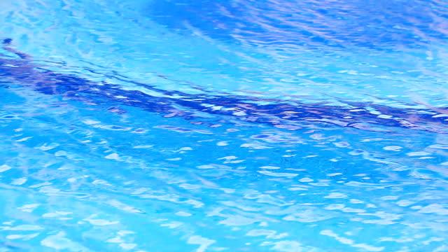 HD:Swimming pool. video