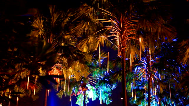 HD:Tree with colorful lighting at night. video