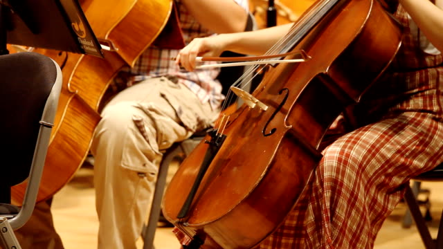 HD:Violoncello players. video